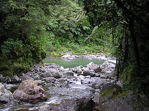 Tararua Range - Clem Creek flowing into the Waiohine River