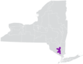 New York State Senate District 39 (2012).png