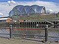Newcastle the sage.jpg