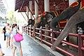 Nong Nooch Orchid Wonderland, Pattaya - panoramio.jpg