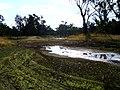 North Wagga flats flood plain.jpg