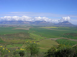 Northern Cape in South Africa.JPG