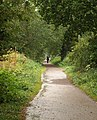 Norton Radstock Greenway - geograph.org.uk - 1528373.jpg