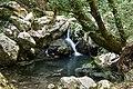 Oasi delle Grotte del Bussento. Piscine naturali.jpg