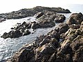 Offshore rocks at Ballantrae - geograph.org.uk - 262998.jpg