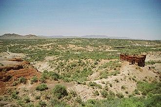 Louis Leakey - Olduvai Gorge.