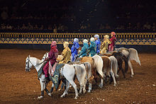 A row of about eight Arabian horses ridden by people in colorful Arab-style attire