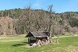 Pörtschach Winklern Am Kåte Dörrkasten in Streuobstwiese 30032019 6224.jpg
