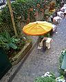 P1210669 Paris VI rue Mabillon rwk.jpg