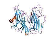 peptidylglycine amidating Peptidylglycine α-amidating monooxygenase (pam) is a bifunctional enzyme that catalyzes the final reaction in the maturation of α-amidated.