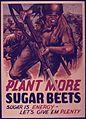 PLANT MORE SUGAR BEETS. SUGAR IS ENERGY. LET'S GIVE `EM PLENTY. - NARA - 515180.jpg