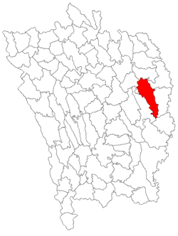 Location of Pădureni