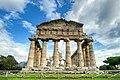 Paestum Temples (Italy, October 2020) - 20 (50561599653).jpg