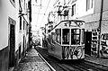 Painted tramway (34349502514).jpg