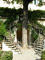 Palazzo dei cartelloni, giardino 02, scala atenaglia.JPG