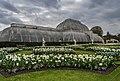 Palm House at Kew Gardens A.jpg