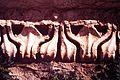 Palmira. T. di Bel, temenos - DecArch - 1-40.jpg