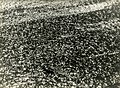Paolo Monti - Serie fotografica - BEIC 6342927.jpg