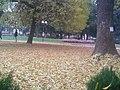 Park Devet Jugovica 09.jpg