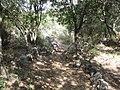 Park Goren, Israel 09.jpg