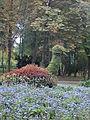 Park Miejski w Kielcach (69) (jw14).JPG