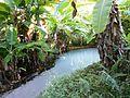 Parque Estadual do Jalapão - Fervedouro.JPG