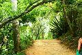 Parque Nacional Waraira Repano..jpg