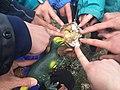Participants in a Denali Backcountry Adventure, a camp for young adults. (bd71d2b9-db72-483a-9a7a-817530e3e93b).jpg