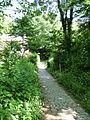 Path LLN.JPG