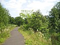 Path beside the Luggie Burn - geograph.org.uk - 1221015.jpg