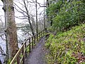 Path beside the River Ayr - geograph.org.uk - 764236.jpg