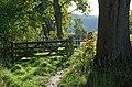 Path by The Cut - geograph.org.uk - 1007286.jpg