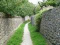 Path in Carleton 03.jpg