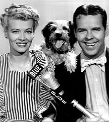 "Penny Singleton as Blondie and Arthur Lake as Dagwood Bumstead, from a 1944 publicity photograph. A smiling white woman with blonde curls and a striped pinafore apron; a smiling white man wearing a bow tie; a small dog posed between their shoulders; and a microphone in front of them, labeled ""Blue""."