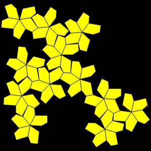 Pentagonal hexecontahedron - Image: Pentagonal hexecontahedron variation net