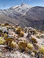 Pico Bolìvar, Venezuela (12679657473).jpg