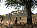 Picote - Paraiba - Brasil - panoramio.jpg