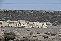 PikiWiki Israel 50062 capernaum.jpg