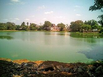 Tenali - A pond at Pinapadu area of Tenali