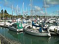 Pine Harbour Marina Beachlands New Zealand.jpg