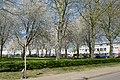 Plantsoen 't Blok Spring 2020 P1460834.jpg