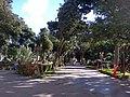 Plaza Mariño de Turmero - panoramio.jpg