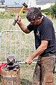 Plougoulm - Gouel an Eost 2011 - Remplacement du fer d'un cheval étape 008.jpg