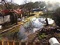 Pludi druvciema 2011 - panoramio (36).jpg