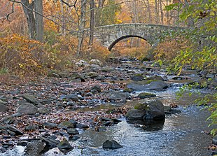 A forest with a small river flowing beneath an arched stone bridge