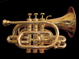 Pocket trumpet - The complete information and online sale