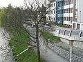 Pohled z mostu na Kalinovo nábřeží v Havlíčkově Brodě.JPG
