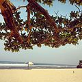 Pok Tunggal Beach.jpg