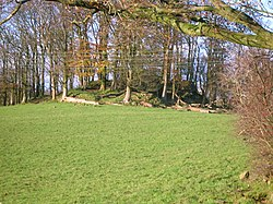 Polnoon Castle mound - from road.JPG