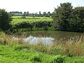 Pond in the Fields - geograph.org.uk - 897280.jpg